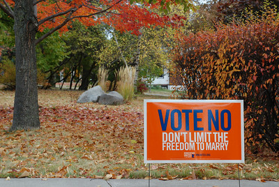 "2012 10 14: Vote No, Fall Color, ""Blue"""