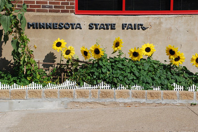 2010 08 29, Sunday:  Minnesota State Fair
